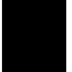 ANALÓGICO