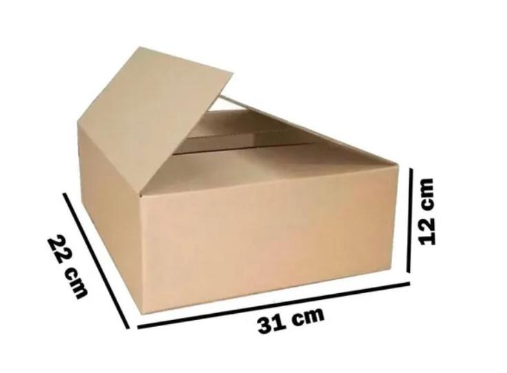 Caixa Papelão Correio Sedex Pac 31 X 22 X 12 - 10 Caixas