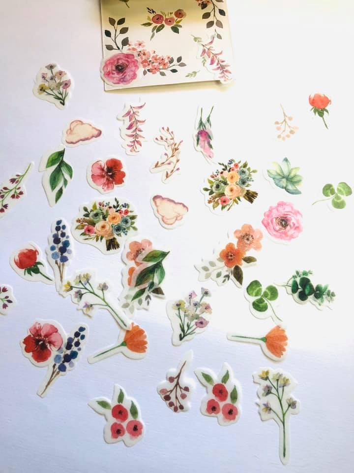 Adesivo Flores e Raminhos