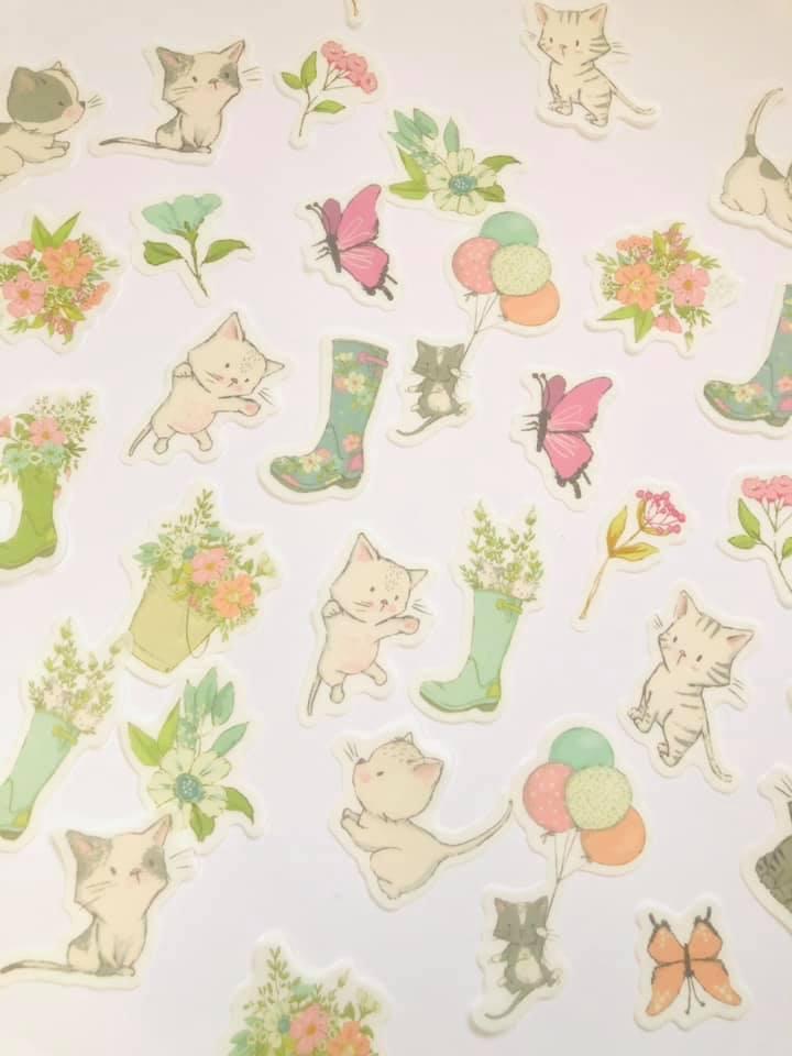 Adesivo Galocha/Cats