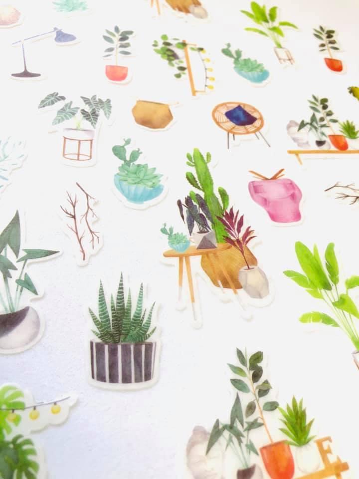 Adesivo Plantas decor