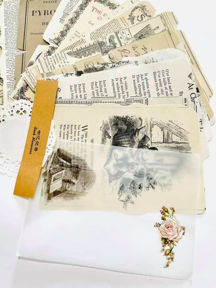 Kit de folhas vintage
