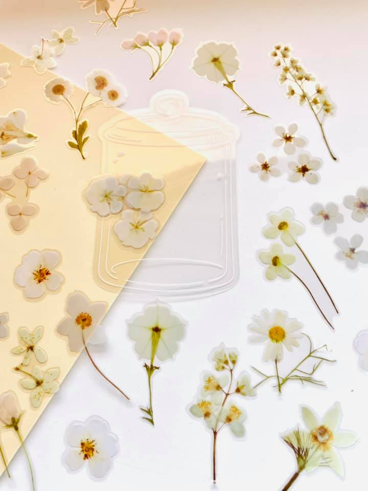 Mason Jar flores brancas