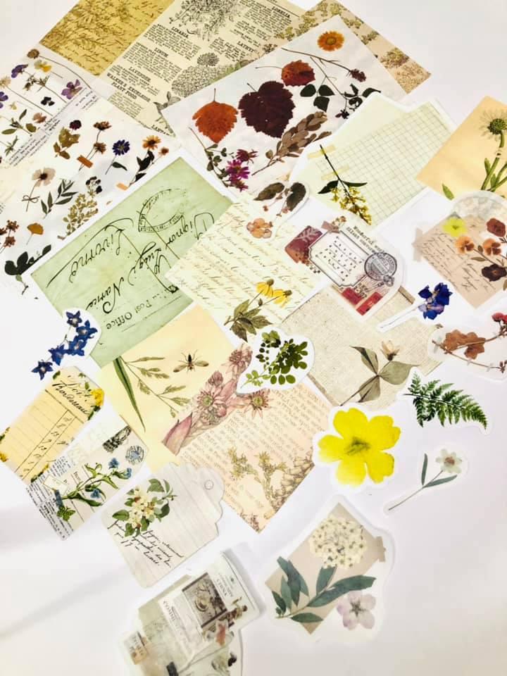 Vintage coleção DIY Floral