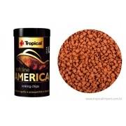 Tropical Soft Line America Size L | Ração para Peixes