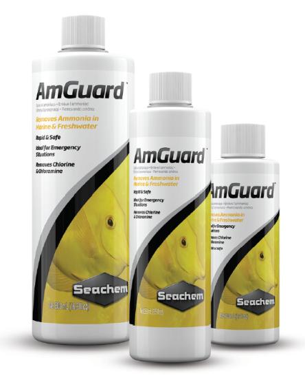 Seachem Amguard | Condicionador de Água  - KAUAR
