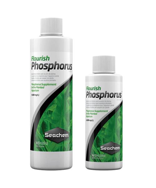 Seachem Freshwater Flourish Phosphorus | Suplemento para plantas de aquário  - KAUAR