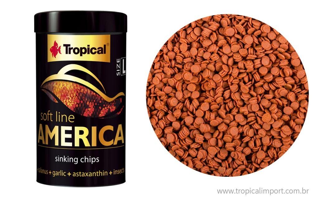 Tropical Soft Line America Size L | Ração para Peixes   - KAUAR