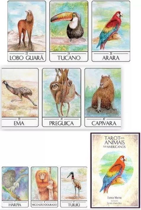 Tarot Dos Animais Sul Americanos + Um Lindo Presente P/ Você