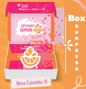 Box Surpresa Laranja Lima Presentes 250