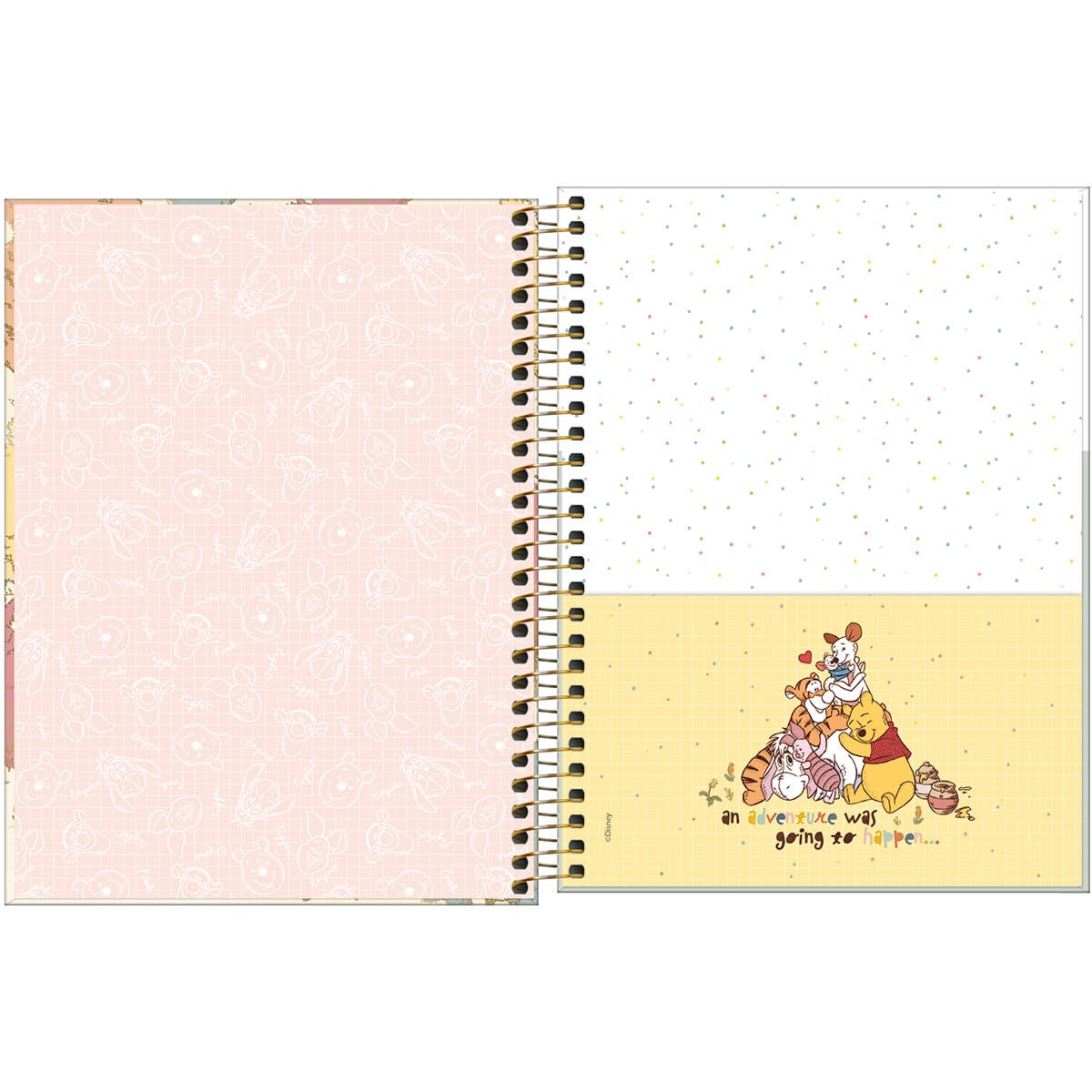 Caderno Colegial 1 Matéria POOH Tilibra