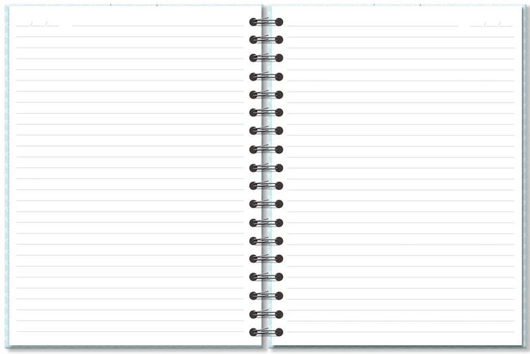 Caderno Colegial Sereias 200fls