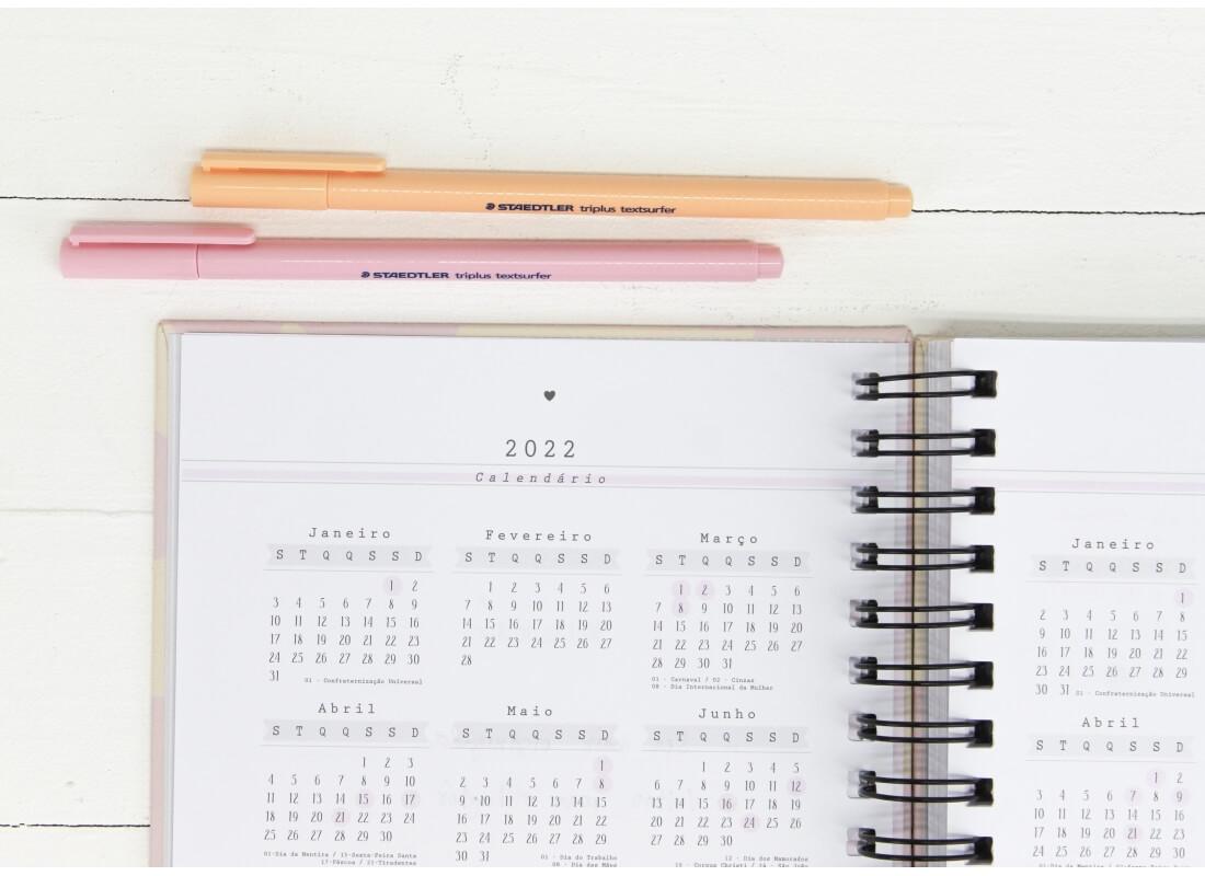 Planner Permanente O Que Vamos Fazer Hoje? Papelote