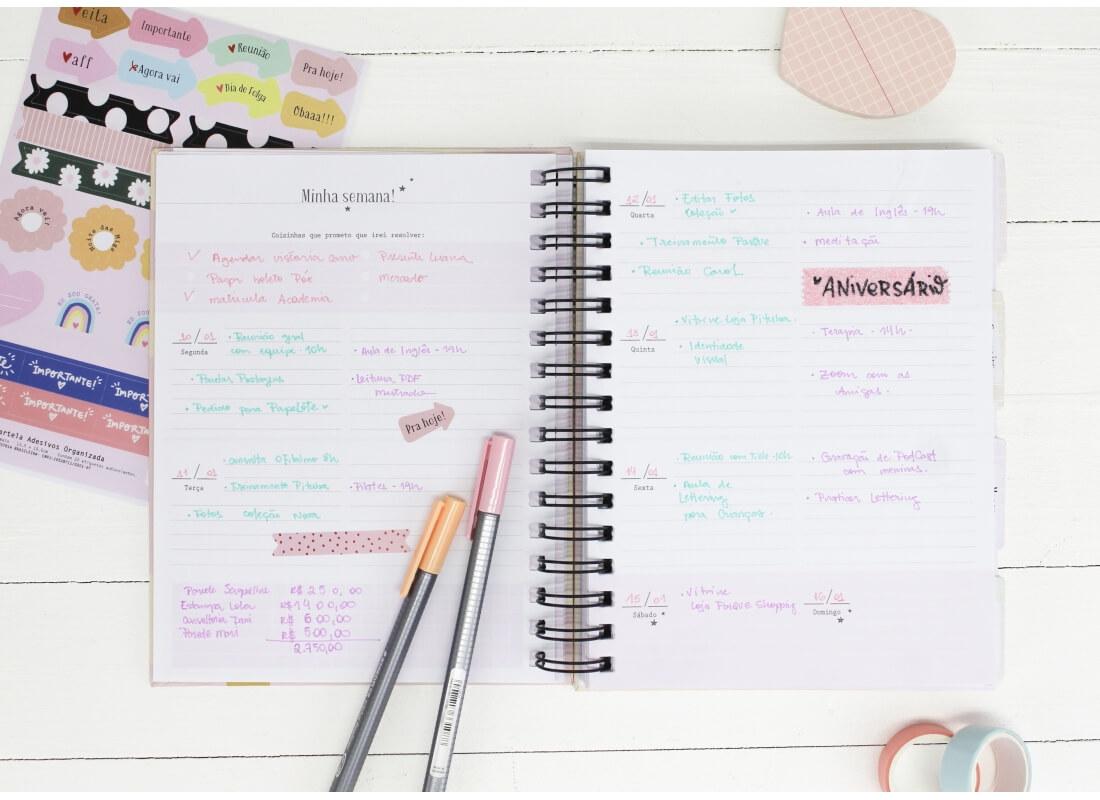 Planner  Permanente Serei Organizada! Papelote