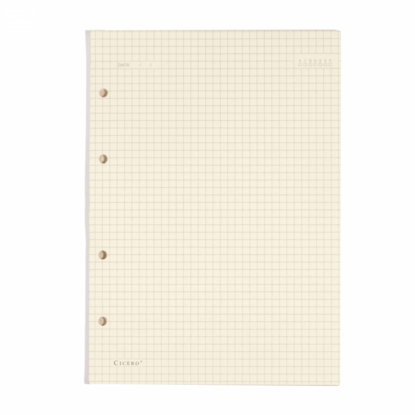 Refil Caderno Fichario 17x24cm Quadriculado Papel Polen