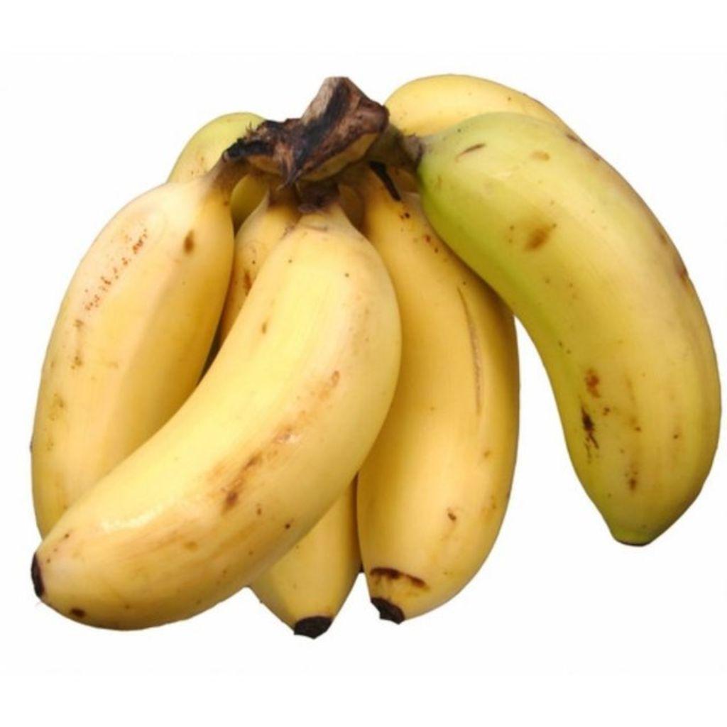 BANANA MACA (500G)  - JJPIVOTTO - Comercio de Frutas