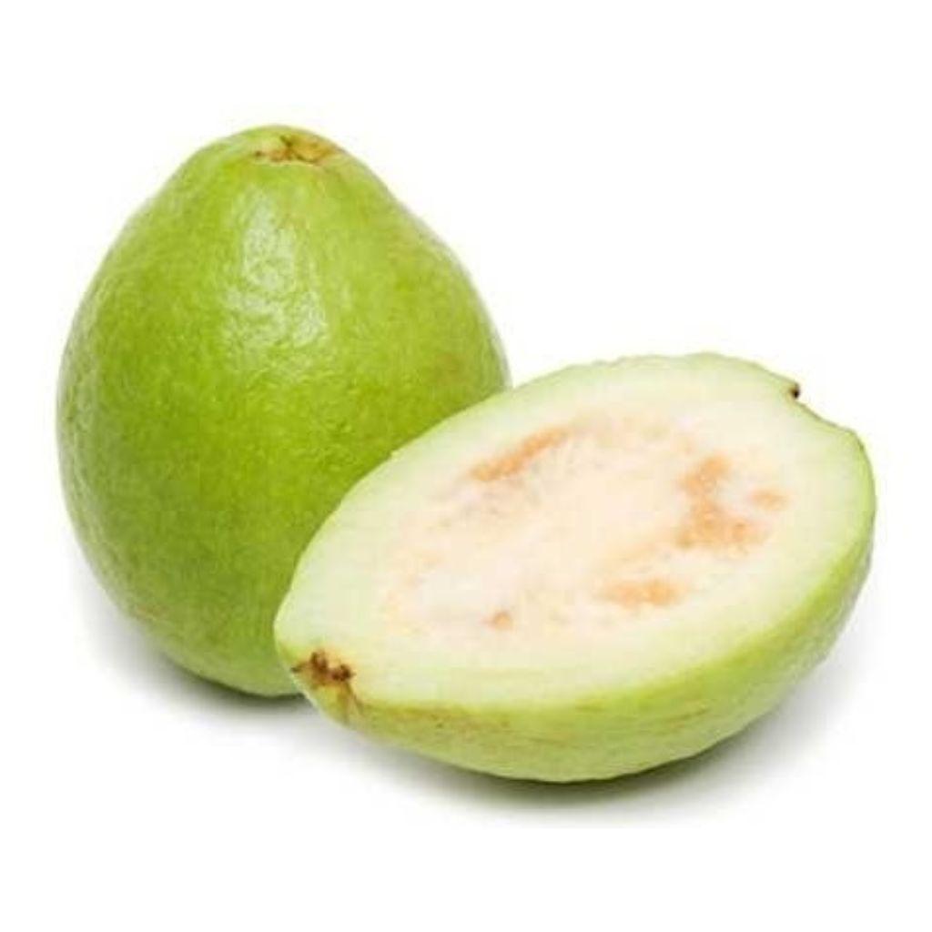 GOIABA BRANCA (BANDEJA C/2)  - JJPIVOTTO - Comercio de Frutas