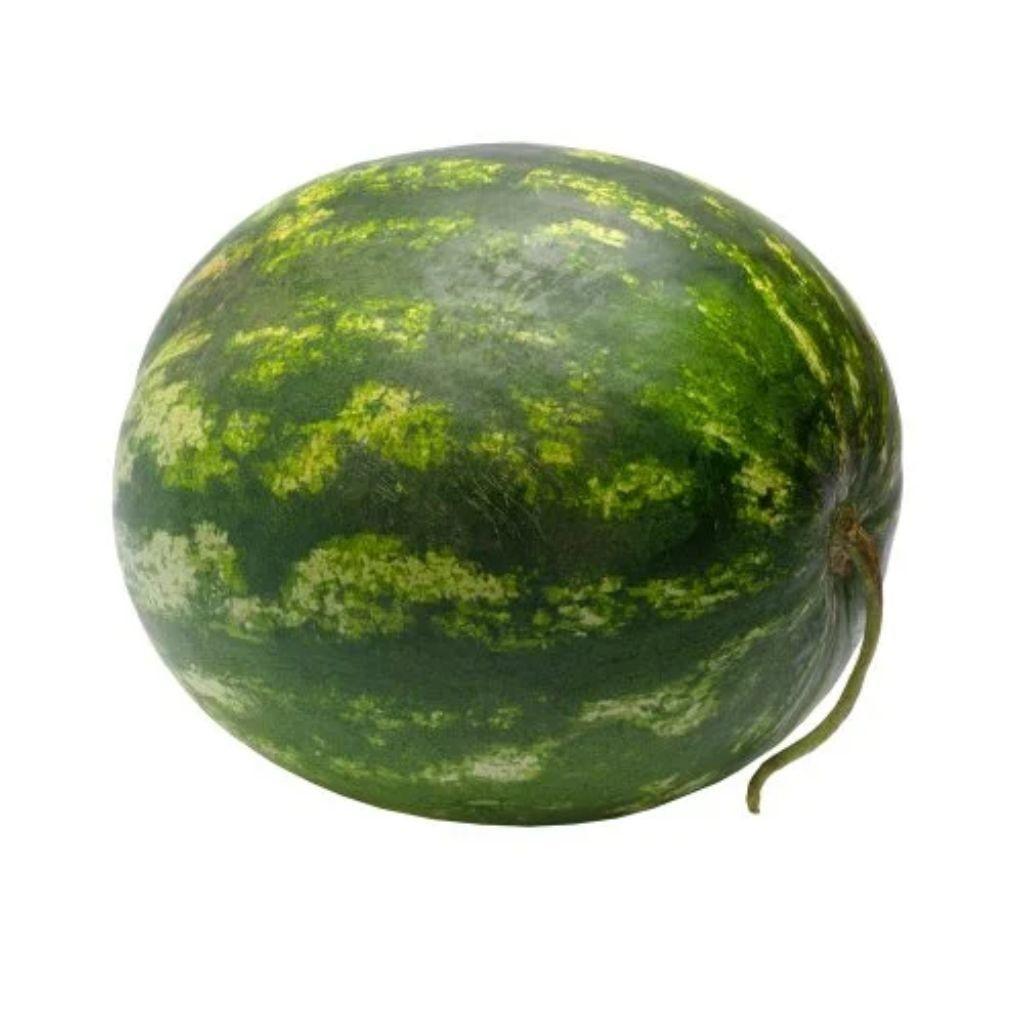 MELANCIA COMUM (UNIDADE)  - JJPIVOTTO - Comercio de Frutas