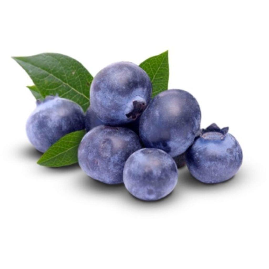 MIRTILO (BANDEJA)  - JJPIVOTTO - Comercio de Frutas