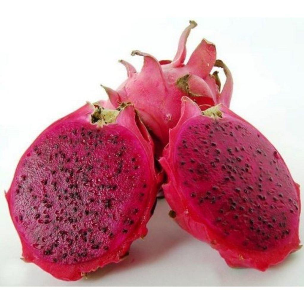 PITAYA (UNIDADE)  - JJPIVOTTO - Comercio de Frutas