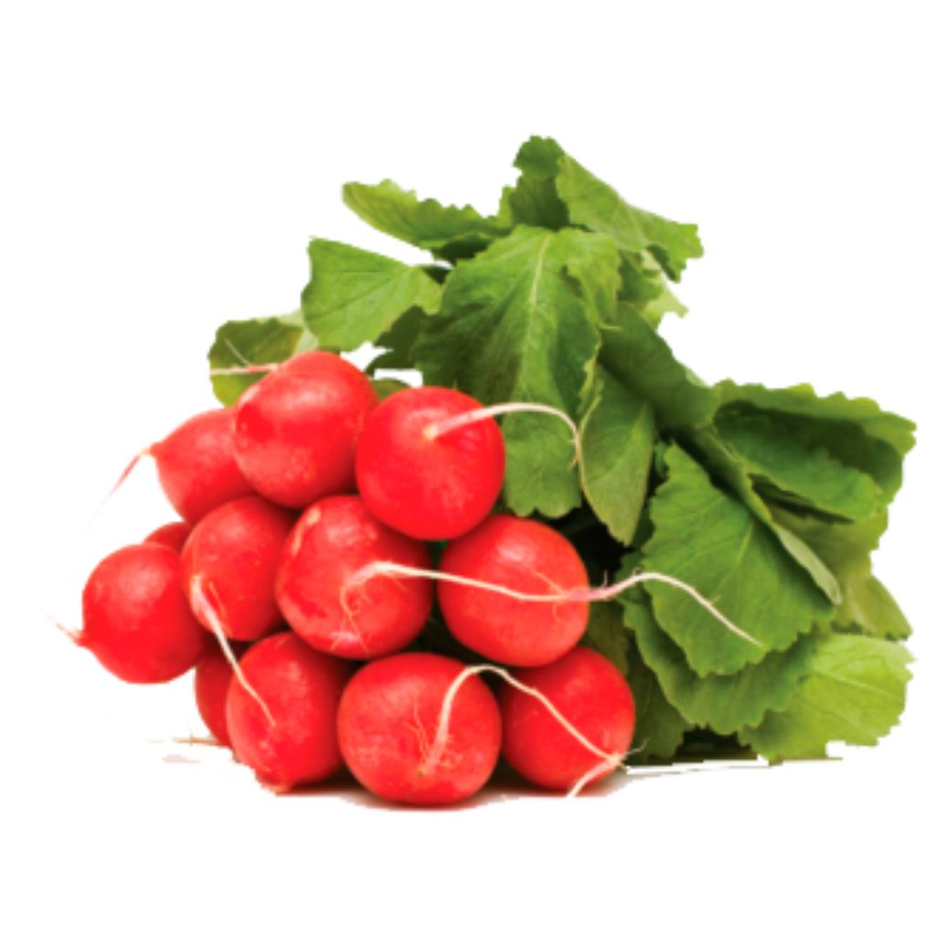 RABANETE (UNIDADE)  - JJPIVOTTO - Comercio de Frutas