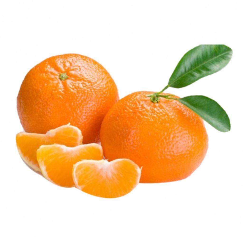 TANGERINA OLE 1KG  - JJPIVOTTO - Comercio de Frutas