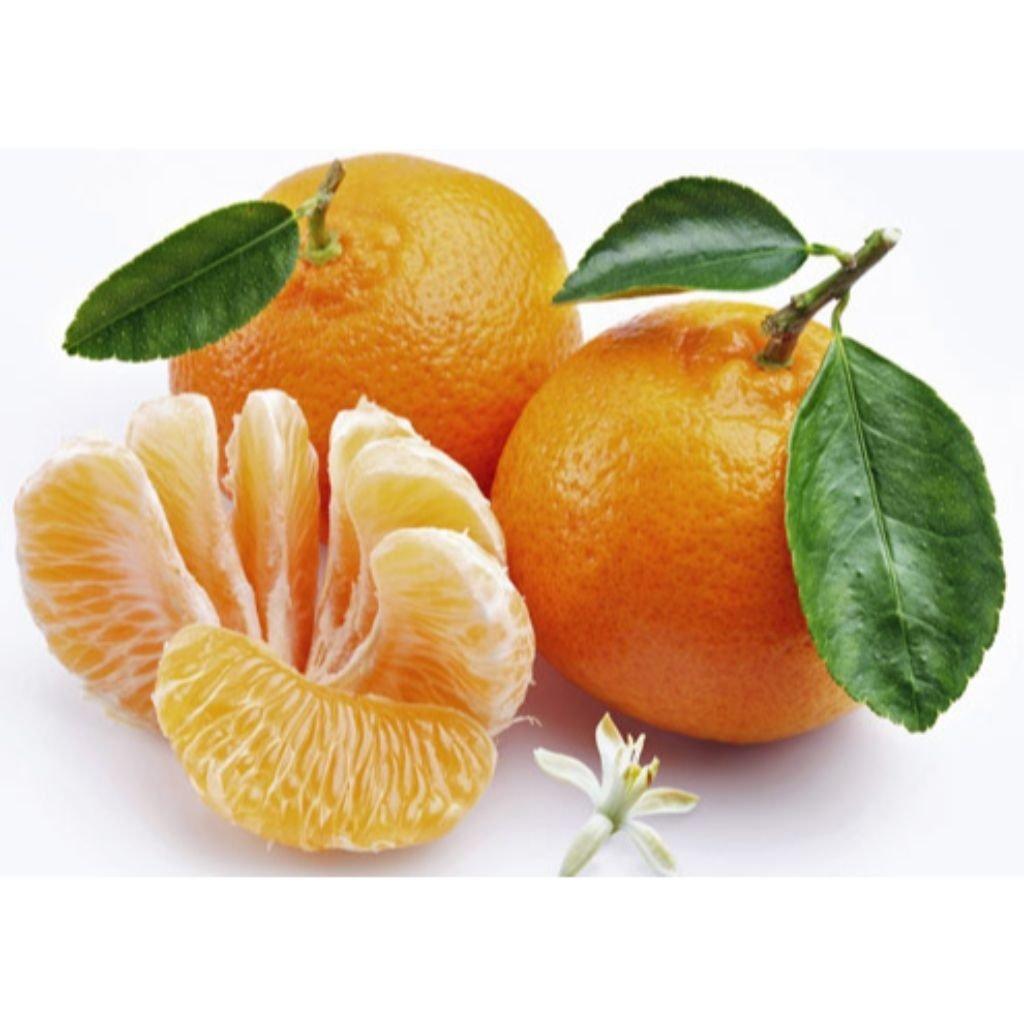 TANGERINA PONCAN (2KG - REDE)  - JJPIVOTTO - Comercio de Frutas