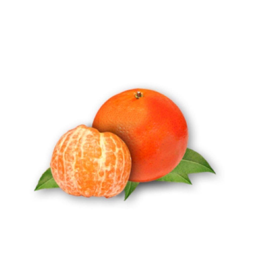 TANGERINA VERONA (UNIDADE)  - JJPIVOTTO - Comercio de Frutas