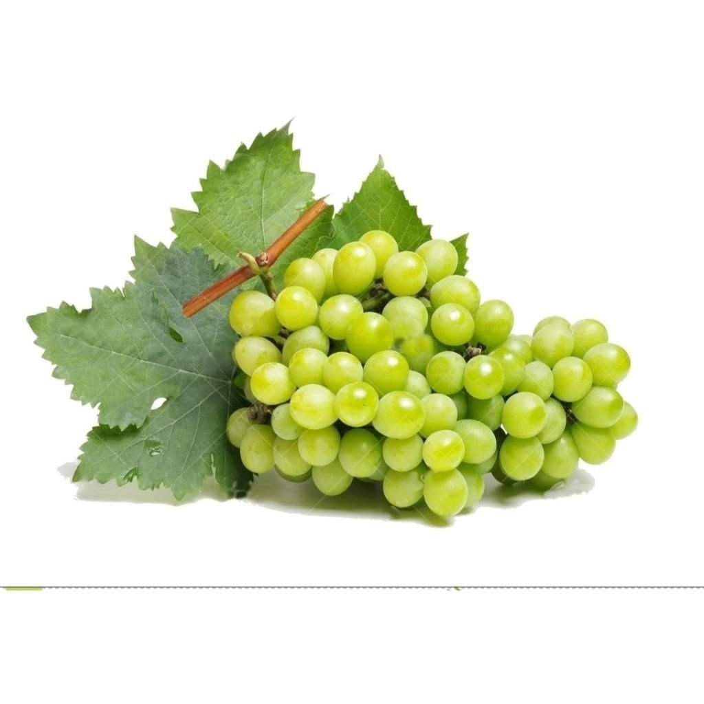 UVA ITALIA (500G)  - JJPIVOTTO - Comercio de Frutas