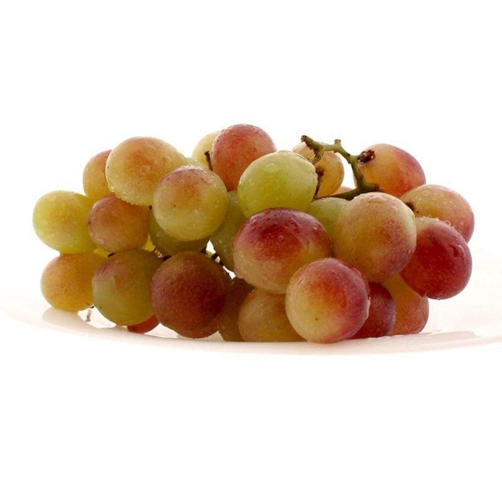UVA RUBI (500G)  - JJPIVOTTO - Comercio de Frutas