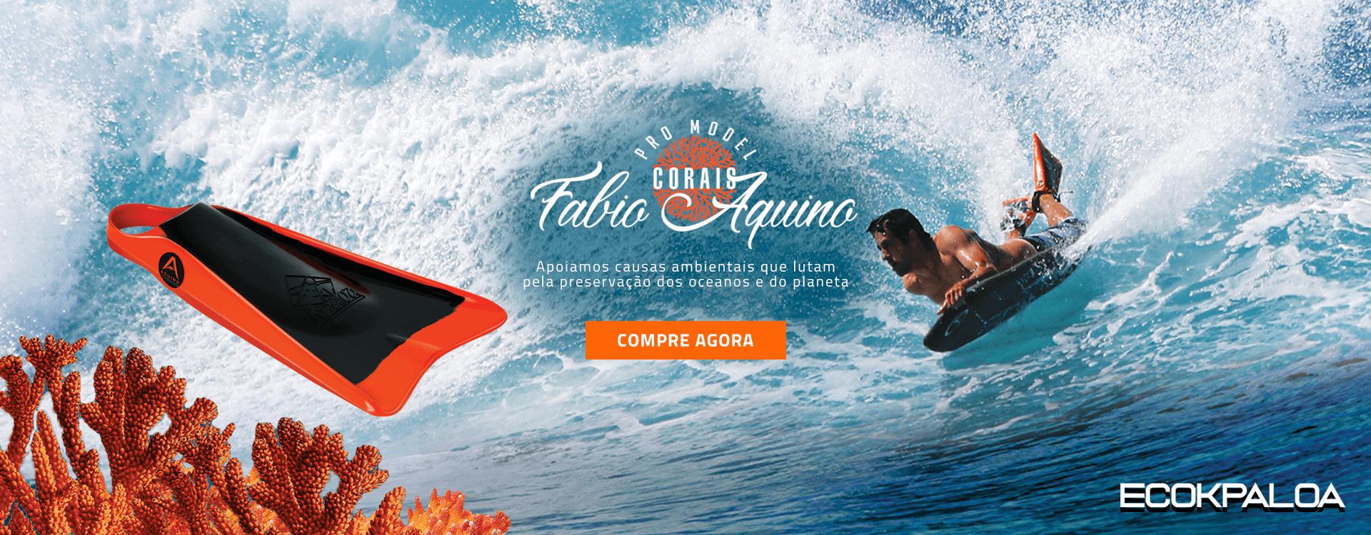 Fabio Aquino Corais
