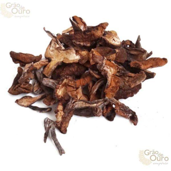 Cogumelo Funghi 100gr