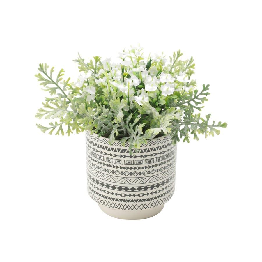 Cachepot Cerâmica Suculentas e Plantas Decoração Moderna