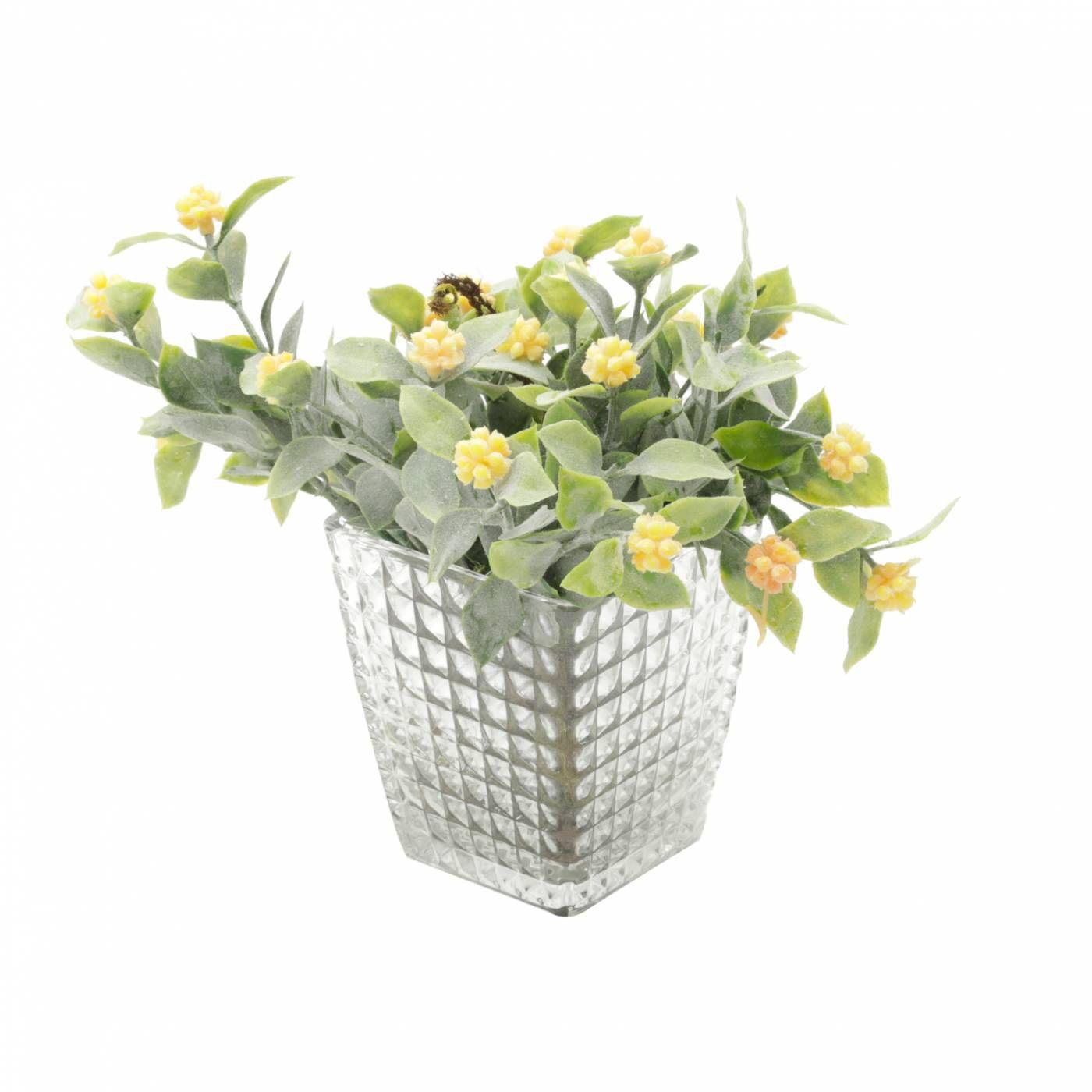 Vaso Bricks Transparente para Suculentas, Plantas e Flor
