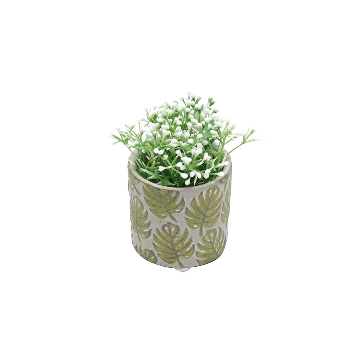 Mini Vaso Costela de Adão