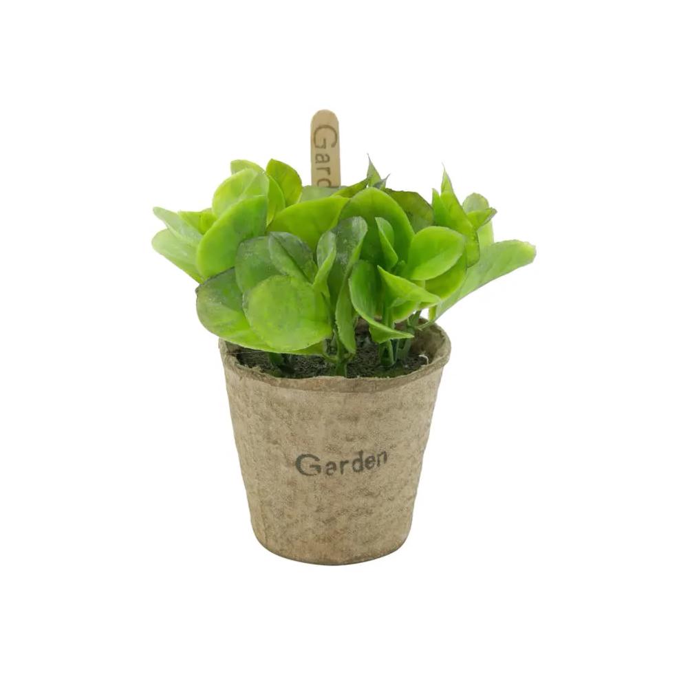Mini Vaso Papel Bean Leaves Verde