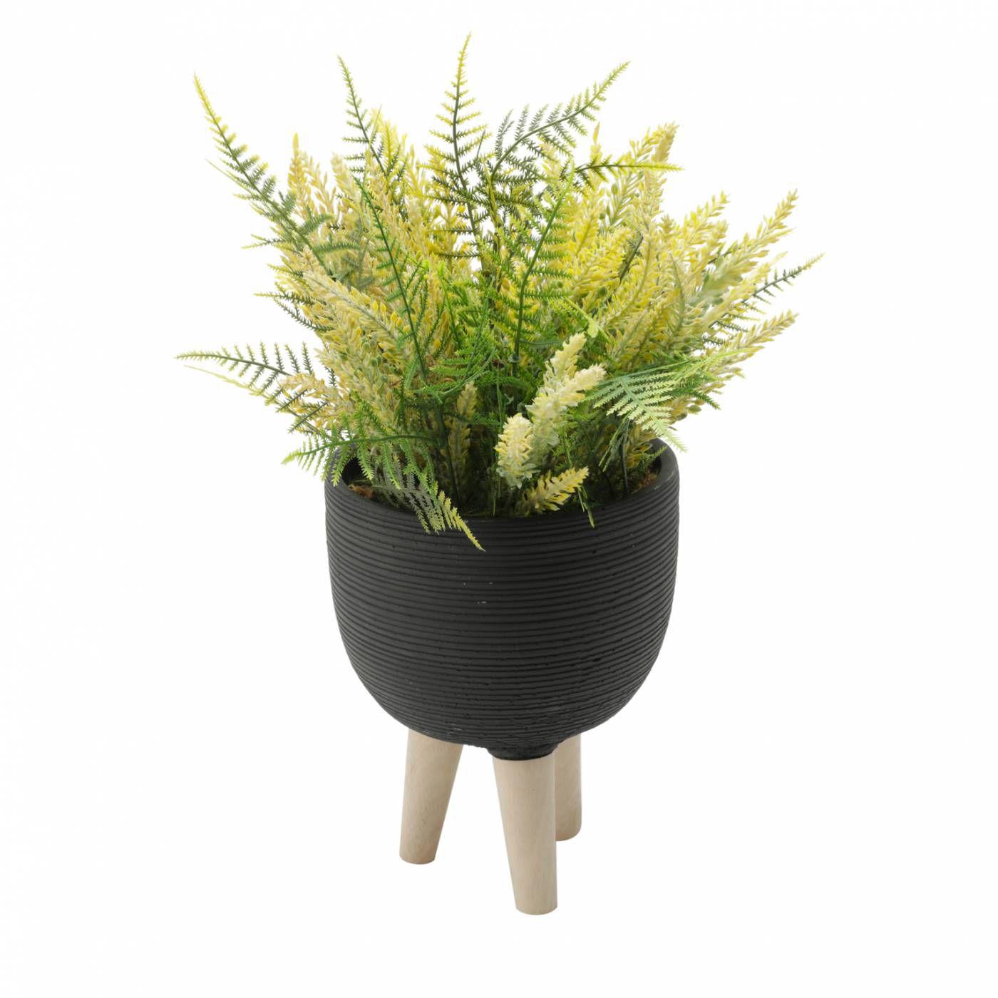 Vaso Concreto Preto Pé de Madeira Suculentas Flores Plantas Decoração