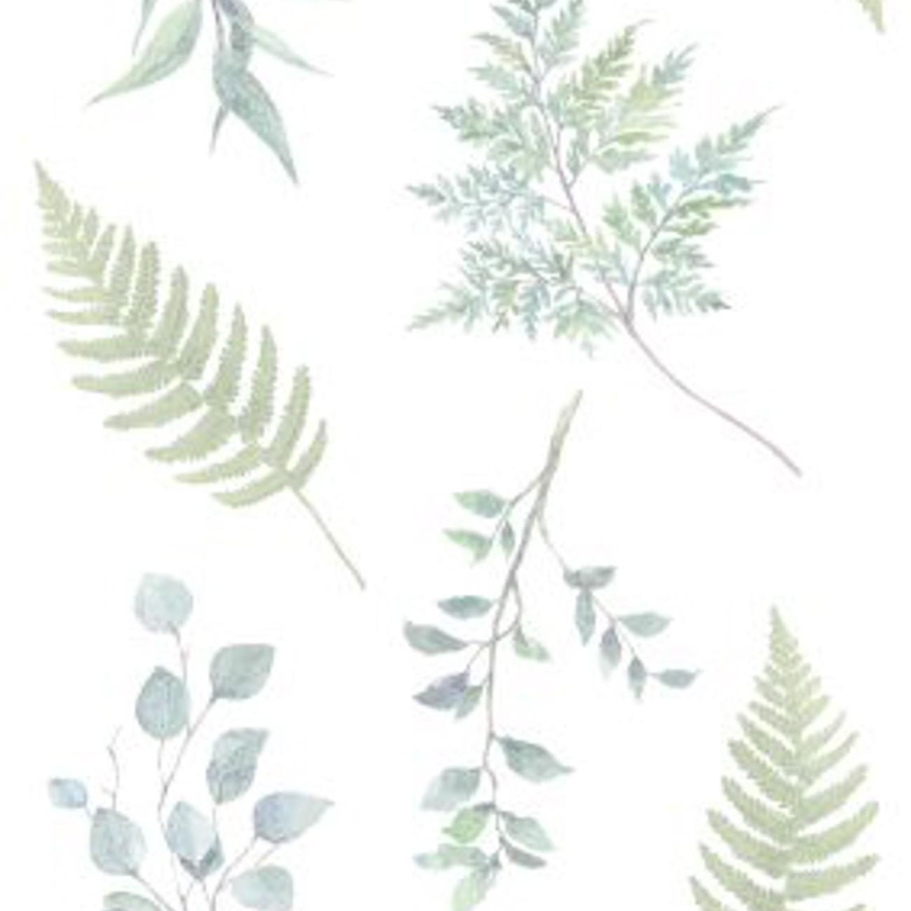 Papel de parede Botânico Folhagem