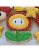 Cortador de Biscoito Flor Carnívora (Tema Mario Bros)