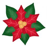 Cortador de Biscoito Flor de Natal (Bico-de-papagaio) (Conjunto com 03 peças de cortadores - Folha vermelha, folha verde e miolo)