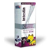 Intestin Para Cães E Gatos 30ml Homeopatia