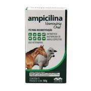 Ampicilina Veterinária 50g Vetnil Antibiótico Oral