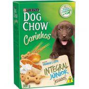 Biscoito Dog Chow Carinhos Integral Junior 300g Frango e Leite
