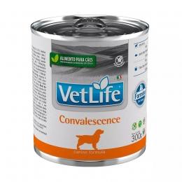 Ração Úmida Farmina Vet Life Convalescence Para Cães 300g