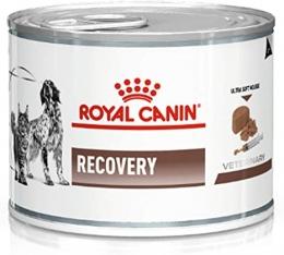 Ração Úmida Royal Canin Veterinary Recovery Cães e Gatos 195g