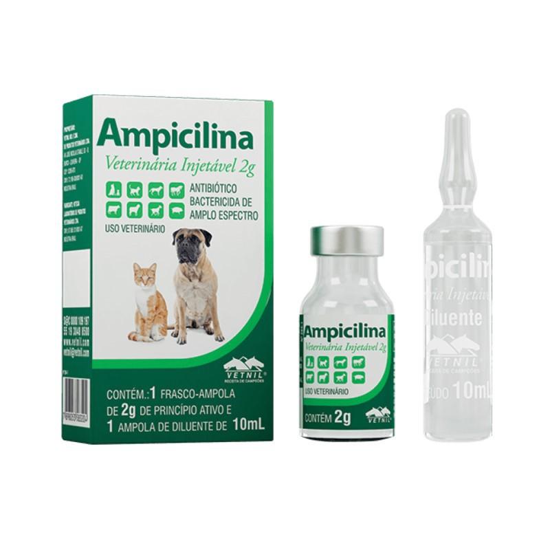 Ampicilina Veterinária 2g 10ml Vetnil Antibiótico Oral