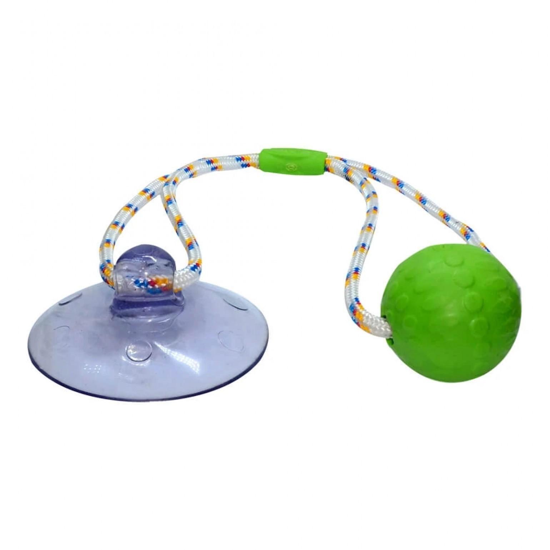 Brinquedo Divercão Push Ball Truqys Pet Verde