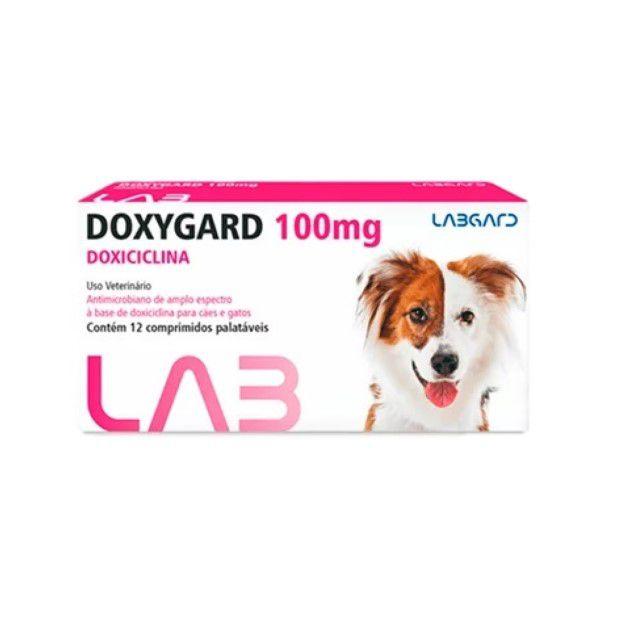 Doxygard 100mg Antimicrobiano Cães E Gatos 12 Comp
