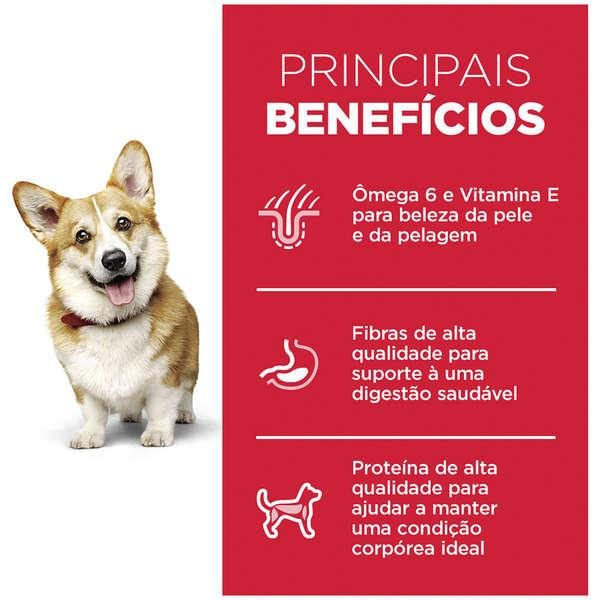 Ração Hill's Science Diet Pedaços Pequenos para Cães Adultos - 800 g