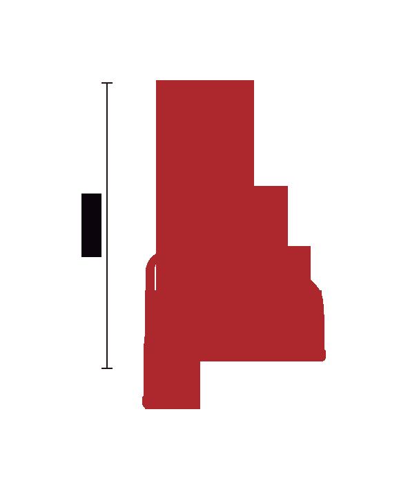 Espremedor de Purê Amassador de Batatas Industrial Dak